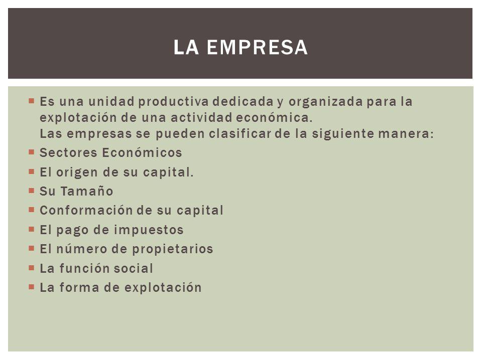  Es una unidad productiva dedicada y organizada para la explotación de una actividad económica.
