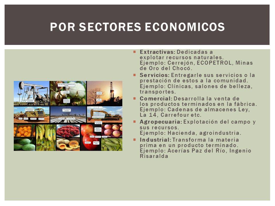  Extractivas: Dedicadas a explotar recursos naturales.