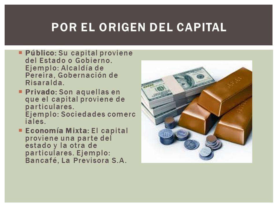  Público: Su capital proviene del Estado o Gobierno.