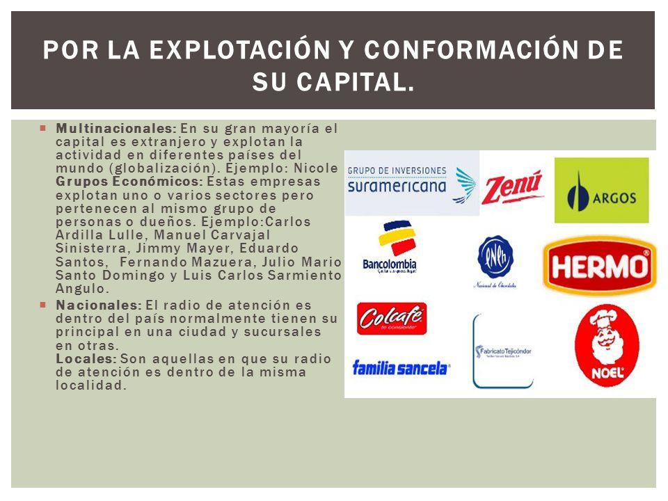  Multinacionales: En su gran mayoría el capital es extranjero y explotan la actividad en diferentes países del mundo (globalización).