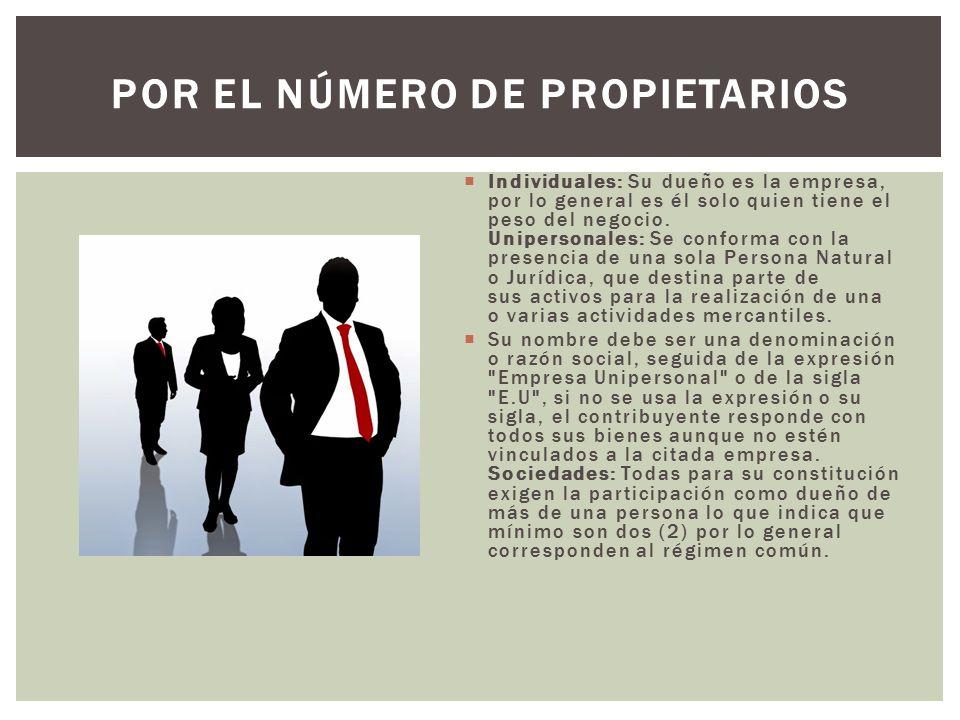  Individuales: Su dueño es la empresa, por lo general es él solo quien tiene el peso del negocio.