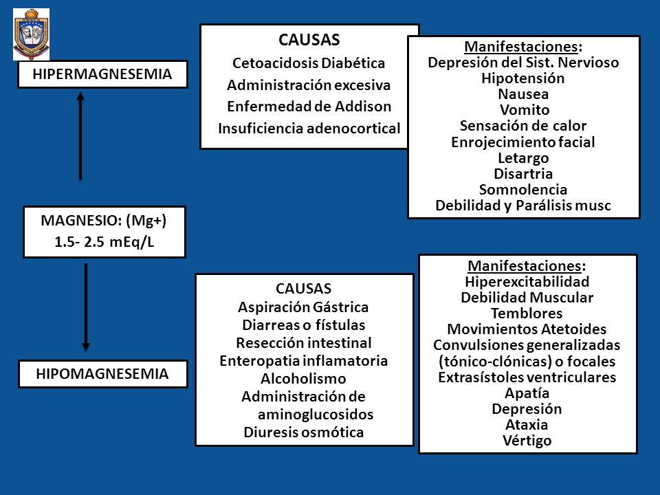 MAGNESIO: (Mg+) 1.5- 2.5 mEq/L HIPERMAGNESEMIA HIPOMAGNESEMIA CAUSAS Cetoacidosis Diabética Administración excesiva Enfermedad de Addison Insuficienci