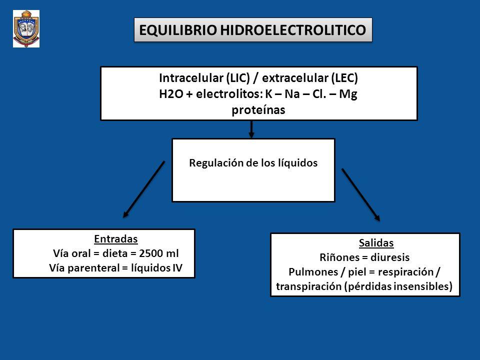 EQUILIBRIO HIDROELECTROLITICO Intracelular (LIC) / extracelular (LEC) H2O + electrolitos: K – Na – Cl. – Mg proteínas Regulación de los líquidos Entra