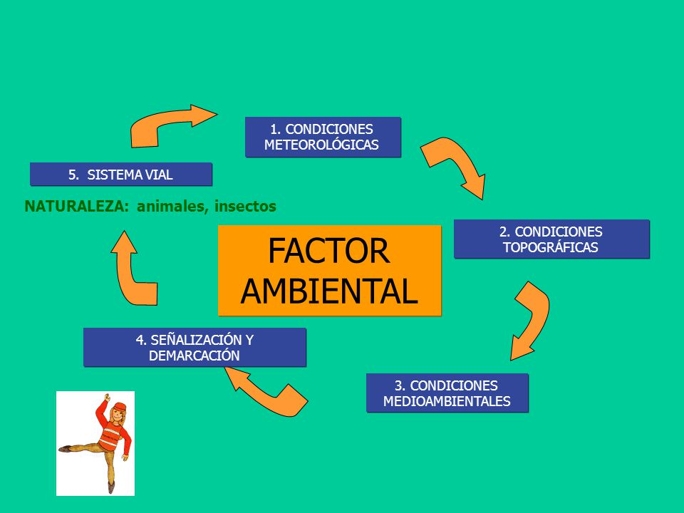 factor medio ambiental: