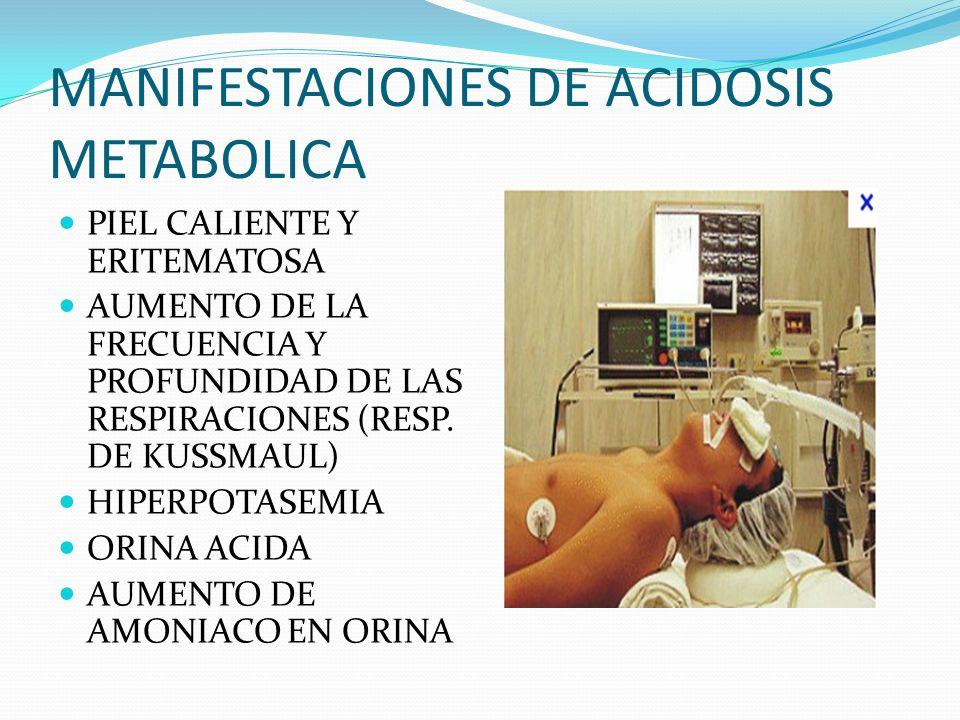 MANIFESTACIONES DE ACIDOSIS METABOLICA PIEL CALIENTE Y ERITEMATOSA AUMENTO DE LA FRECUENCIA Y PROFUNDIDAD DE LAS RESPIRACIONES (RESP.