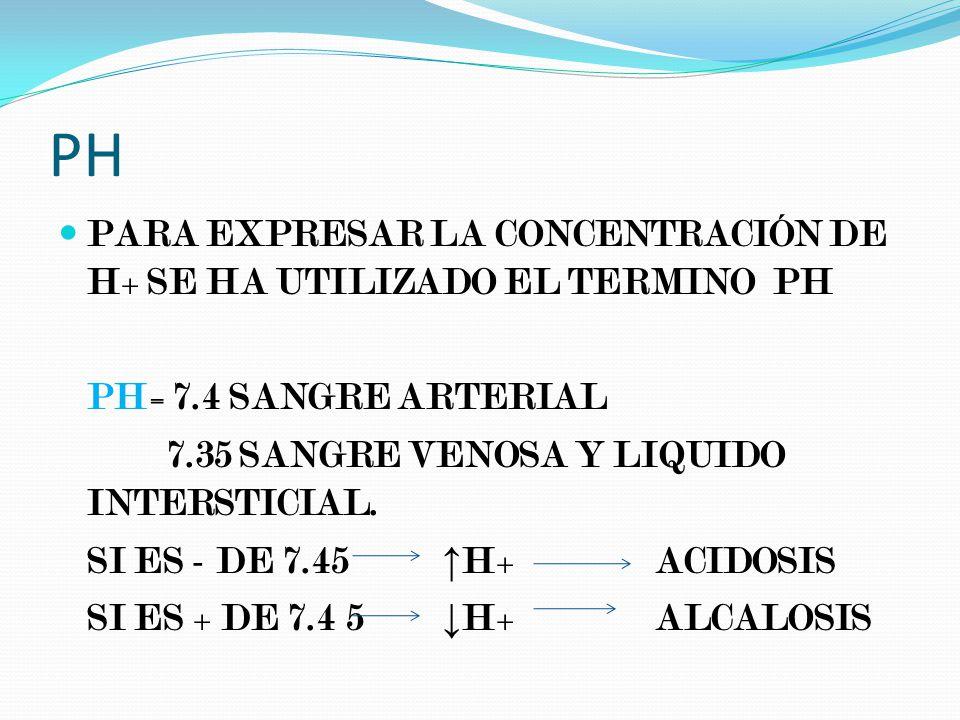 PH PARA EXPRESAR LA CONCENTRACIÓN DE H+ SE HA UTILIZADO EL TERMINO PH PH= 7.4 SANGRE ARTERIAL 7.35 SANGRE VENOSA Y LIQUIDO INTERSTICIAL.