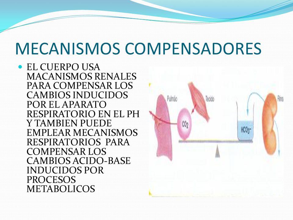 MECANISMOS COMPENSADORES EL CUERPO USA MACANISMOS RENALES PARA COMPENSAR LOS CAMBIOS INDUCIDOS POR EL APARATO RESPIRATORIO EN EL PH Y TAMBIEN PUEDE EMPLEAR MECANISMOS RESPIRATORIOS PARA COMPENSAR LOS CAMBIOS ACIDO-BASE INDUCIDOS POR PROCESOS METABOLICOS