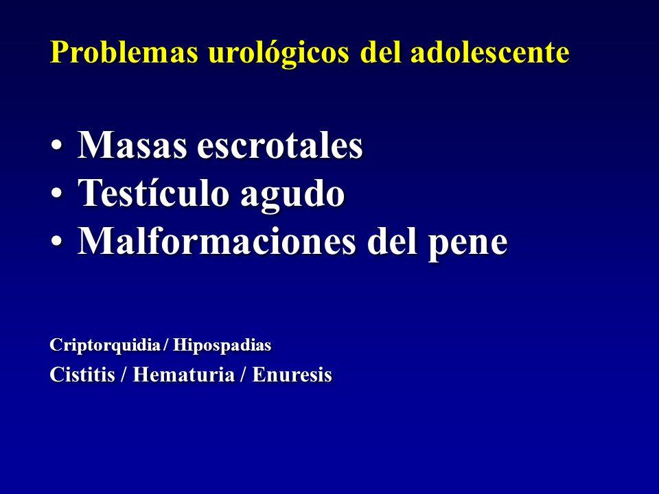 Problemas urológicos del adolescente Masas escrotales Testículo agudo Malformaciones del pene Criptorquidia / Hipospadias Cistitis / Hematuria / Enure
