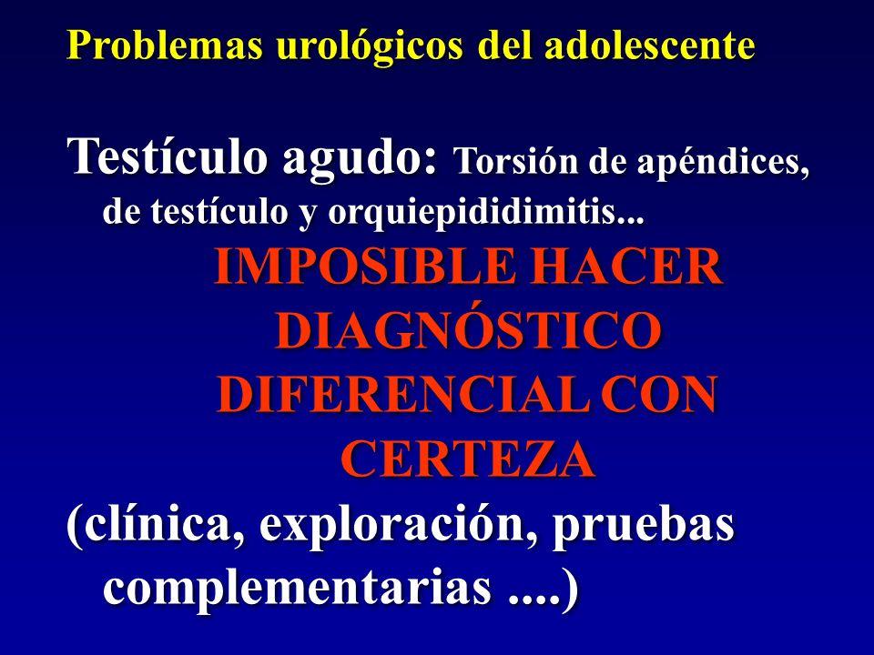 Problemas urológicos del adolescente Testículo agudo: Torsión de apéndices, de testículo y orquiepididimitis... IMPOSIBLE HACER DIAGNÓSTICO DIFERENCIA