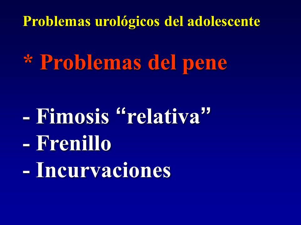"""Problemas urológicos del adolescente * Problemas del pene - Fimosis """" relativa """" - Frenillo - Incurvaciones Problemas urológicos del adolescente * Pro"""