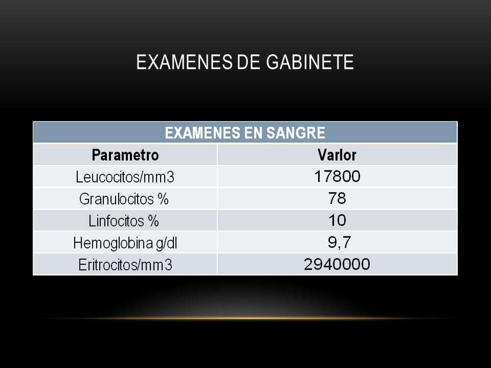 EXAMENES DE GABINETE