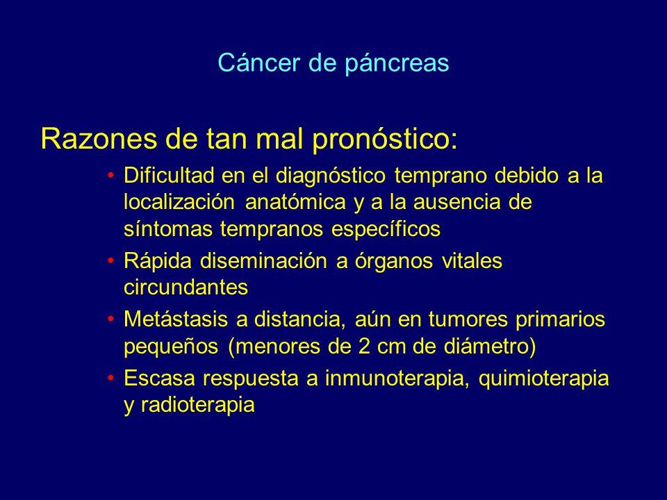 Cáncer de páncreas Razones de tan mal pronóstico: Dificultad en el diagnóstico temprano debido a la localización anatómica y a la ausencia de síntomas tempranos específicos Rápida diseminación a órganos vitales circundantes Metástasis a distancia, aún en tumores primarios pequeños (menores de 2 cm de diámetro) Escasa respuesta a inmunoterapia, quimioterapia y radioterapia