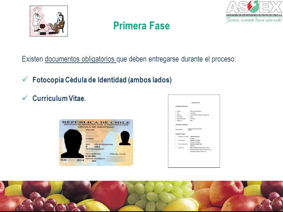 Primera Fase Existen documentos obligatorios que deben entregarse durante el proceso: Fotocopia Cédula de Identidad (ambos lados) Currículum Vitae.