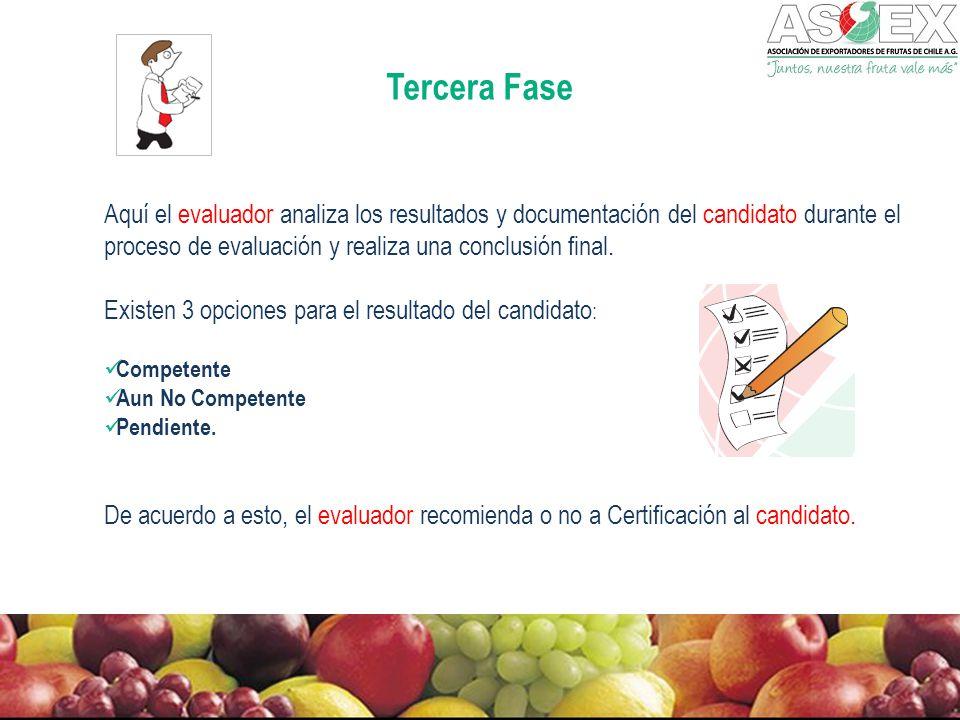 Tercera Fase Aquí el evaluador analiza los resultados y documentación del candidato durante el proceso de evaluación y realiza una conclusión final.
