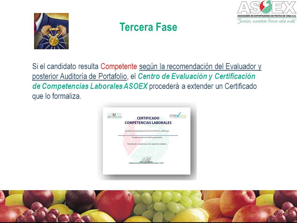 Tercera Fase Si el candidato resulta Competente según la recomendación del Evaluador y posterior Auditoría de Portafolio, el Centro de Evaluación y Certificación de Competencias Laborales ASOEX procederá a extender un Certificado que lo formaliza.