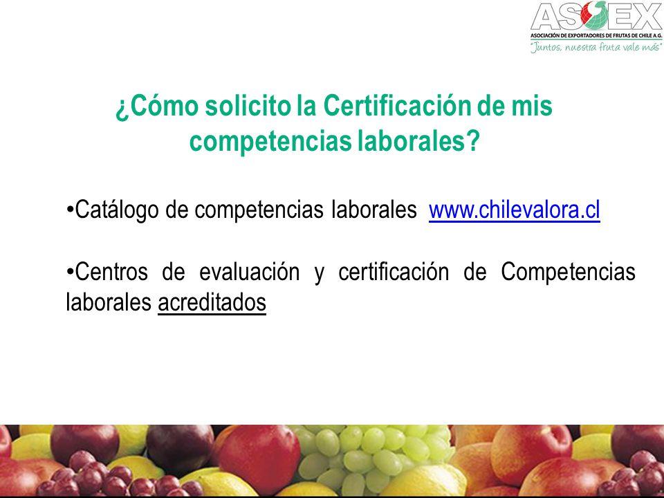 ¿Cómo solicito la Certificación de mis competencias laborales.