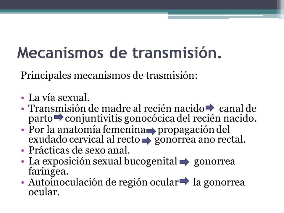 Mecanismos de transmisión. Principales mecanismos de trasmisión: La vía sexual. Transmisión de madre al recién nacido canal de parto conjuntivitis gon