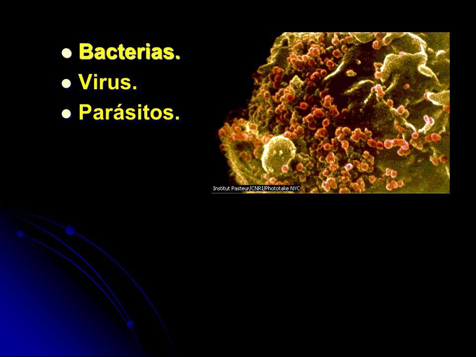 Bacterias. Bacterias. Virus. Virus. Parásitos. Parásitos.