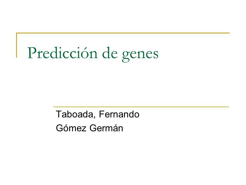 Definición: predicción de genes Para una secuencia de DNA no caracterizada identificar la presencia de genes que codifican proteínas.