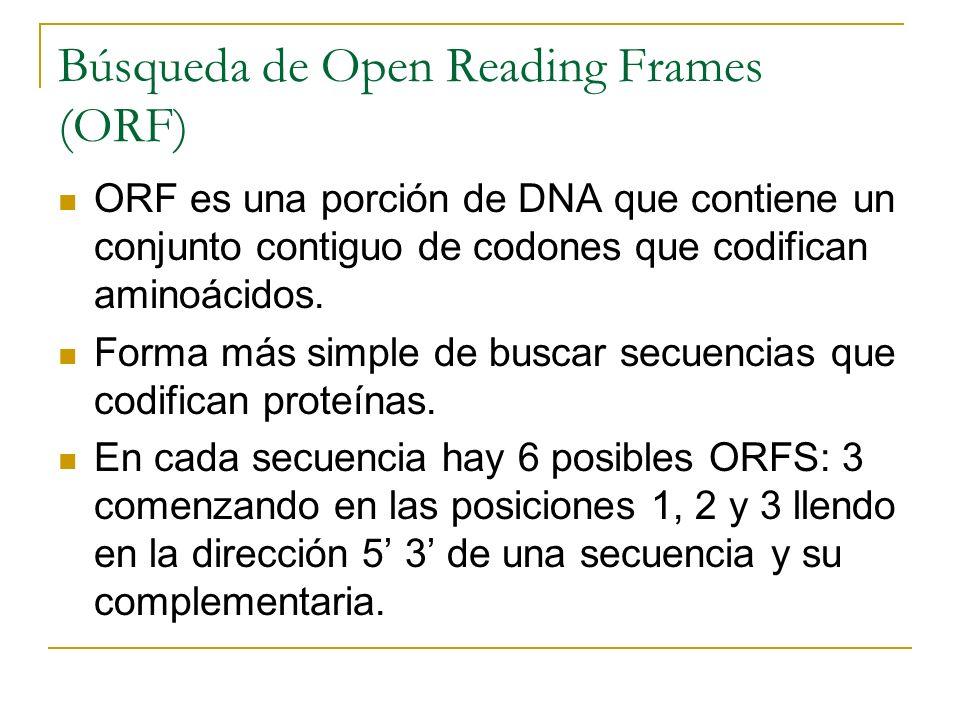 Búsqueda de Open Reading Frames (ORF) ORF es una porción de DNA que contiene un conjunto contiguo de codones que codifican aminoácidos. Forma más simp