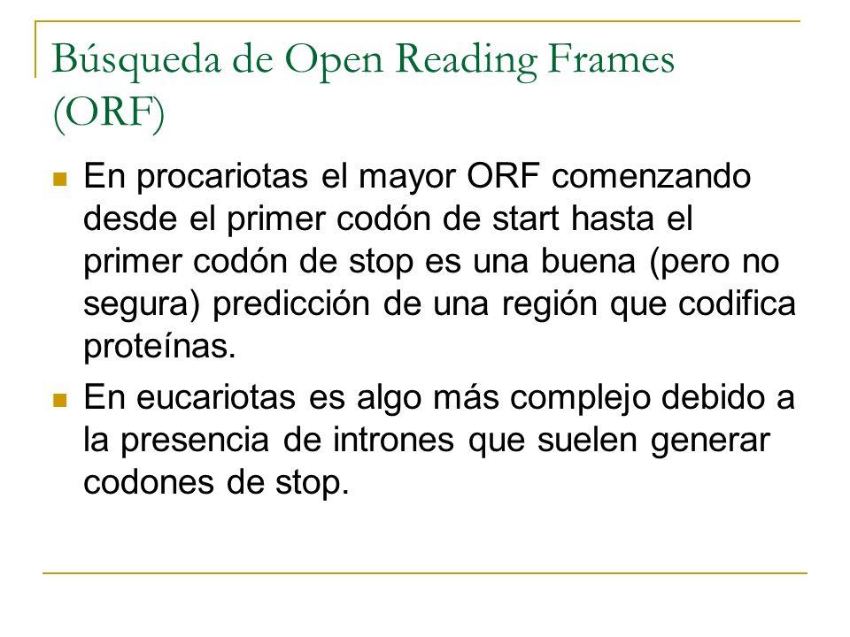 Búsqueda de Open Reading Frames (ORF) En procariotas el mayor ORF comenzando desde el primer codón de start hasta el primer codón de stop es una buena