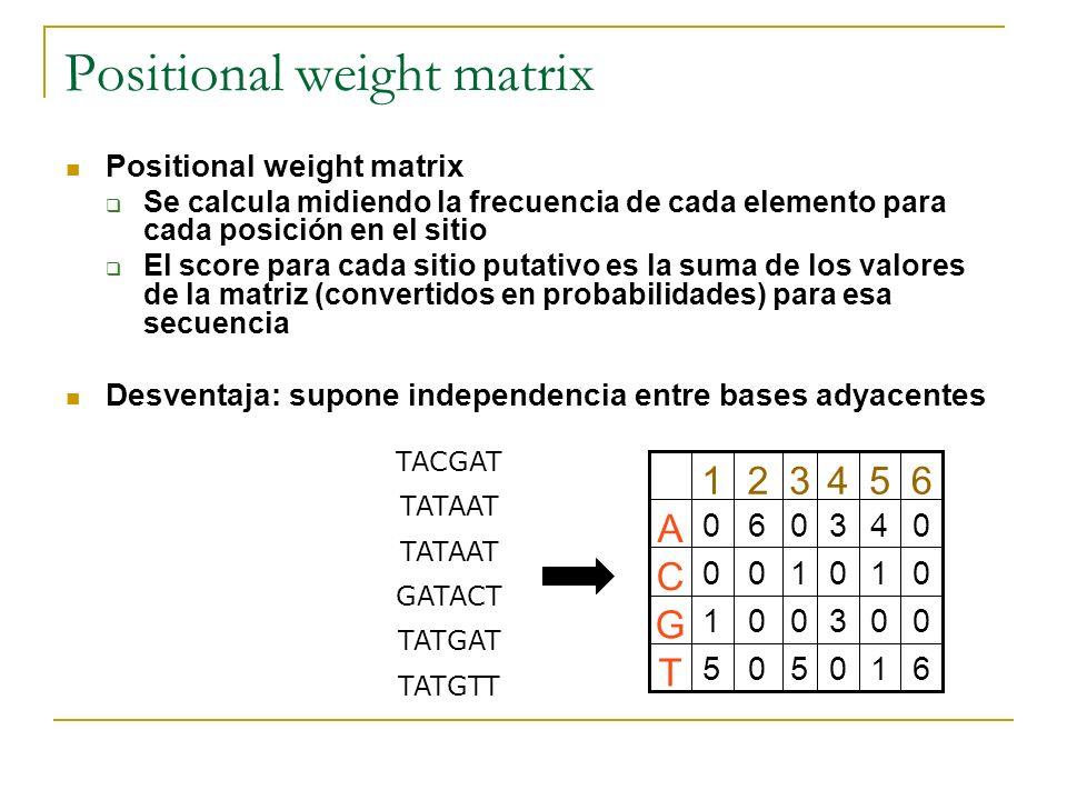 Positional weight matrix TACGAT TATAAT GATACT TATGAT TATGTT 610505 T 003001 G 010100 C 043060 A 654321 Positional weight matrix Se calcula midiendo la