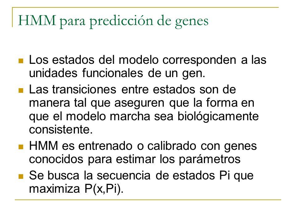 HMM para predicción de genes Los estados del modelo corresponden a las unidades funcionales de un gen. Las transiciones entre estados son de manera ta