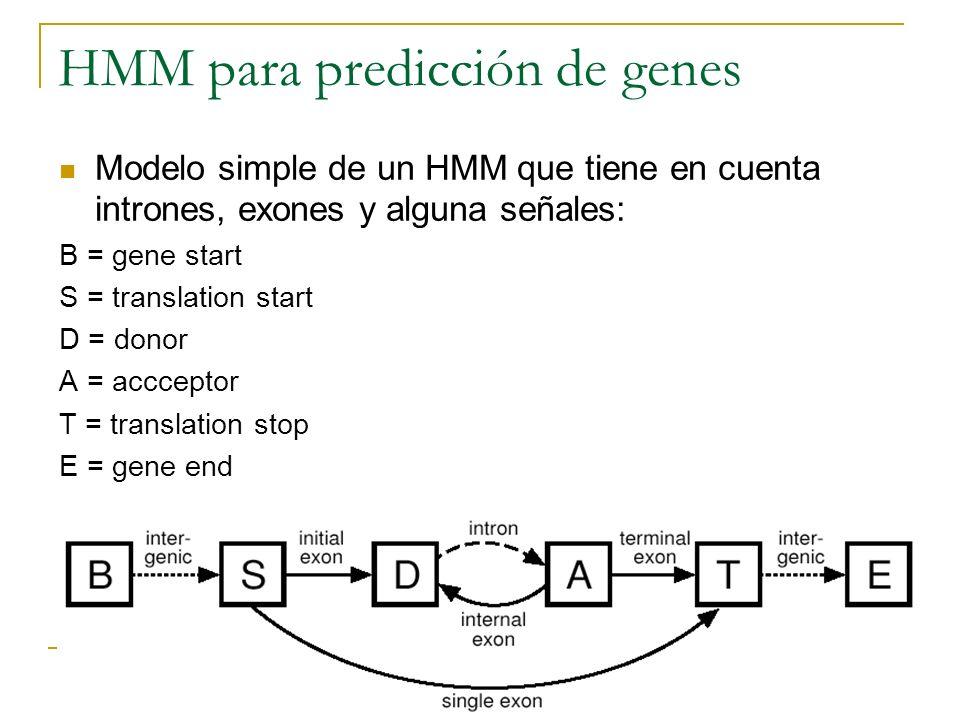 HMM para predicción de genes Modelo simple de un HMM que tiene en cuenta intrones, exones y alguna señales: B = gene start S = translation start D = d
