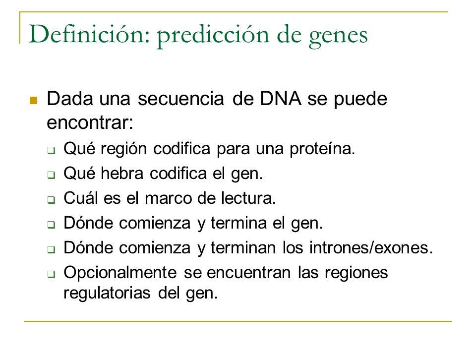 Definición: predicción de genes Dada una secuencia de DNA se puede encontrar: Qué región codifica para una proteína. Qué hebra codifica el gen. Cuál e