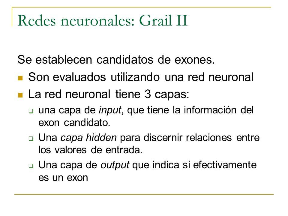 Redes neuronales: Grail II Se establecen candidatos de exones. Son evaluados utilizando una red neuronal La red neuronal tiene 3 capas: una capa de in