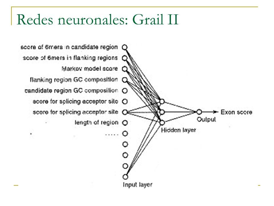 Redes neuronales: Grail II
