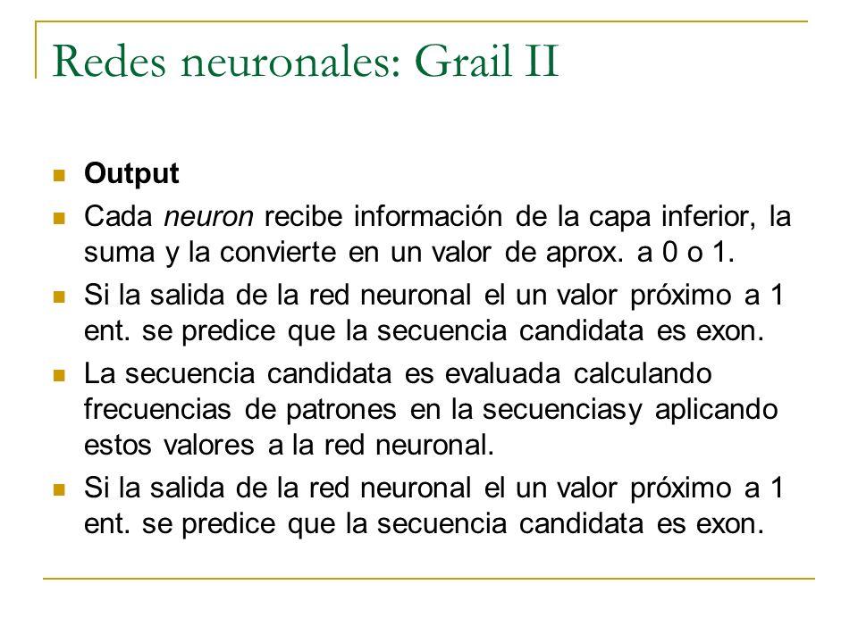 Redes neuronales: Grail II Output Cada neuron recibe información de la capa inferior, la suma y la convierte en un valor de aprox. a 0 o 1. Si la sali