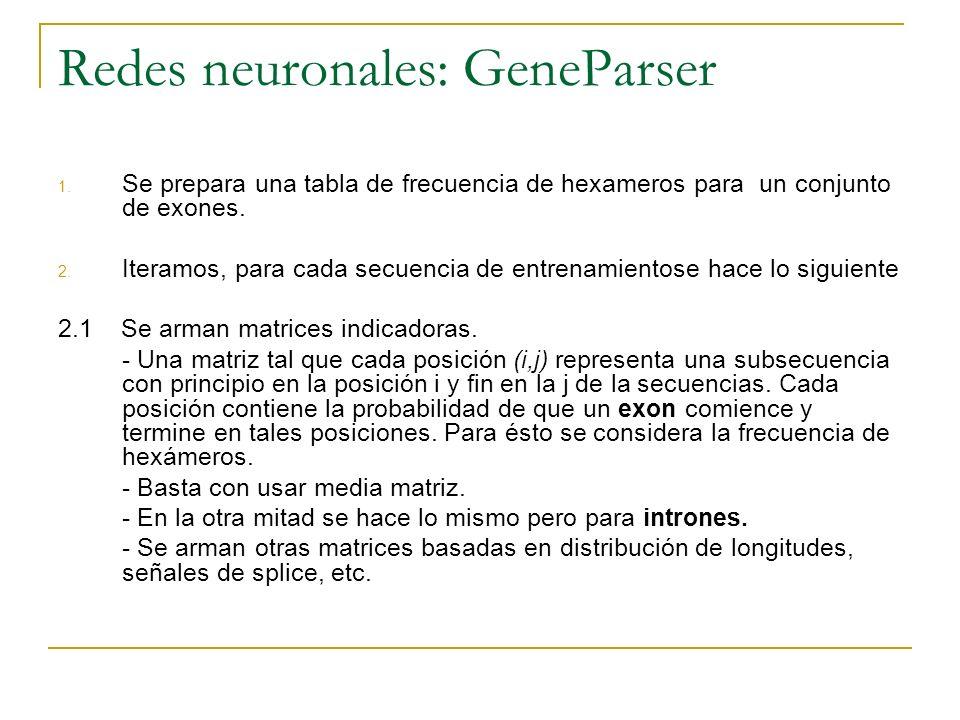 Redes neuronales: GeneParser 1. Se prepara una tabla de frecuencia de hexameros para un conjunto de exones. 2. Iteramos, para cada secuencia de entren