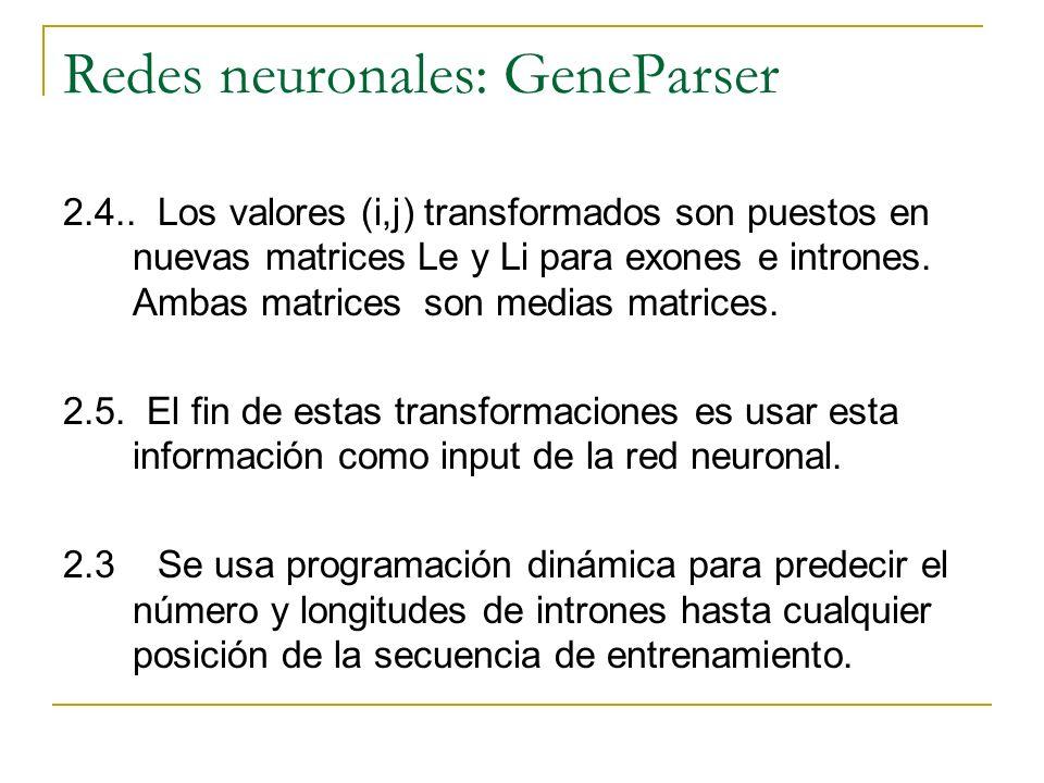 Redes neuronales: GeneParser 2.4.. Los valores (i,j) transformados son puestos en nuevas matrices Le y Li para exones e intrones. Ambas matrices son m