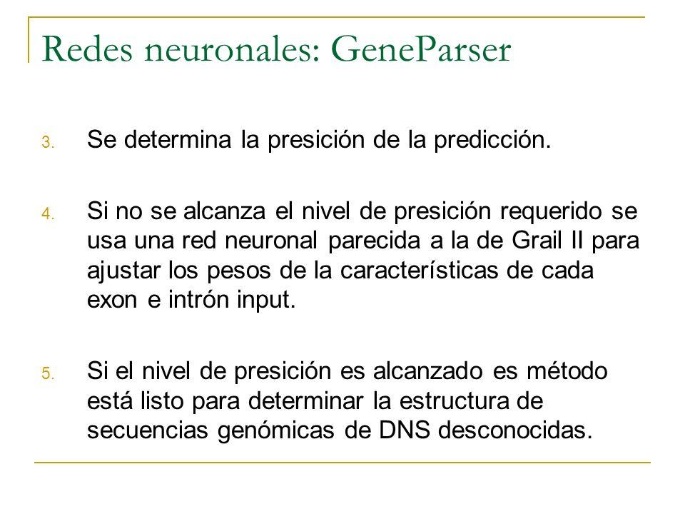 Redes neuronales: GeneParser 3. Se determina la presición de la predicción. 4. Si no se alcanza el nivel de presición requerido se usa una red neurona