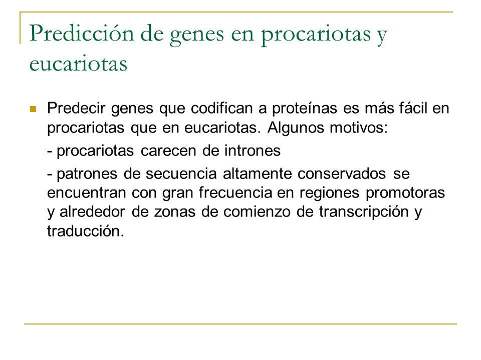 Predicción de genes en procariotas y eucariotas Predecir genes que codifican a proteínas es más fácil en procariotas que en eucariotas. Algunos motivo