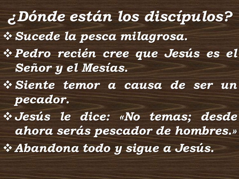 ¿Dónde están los discípulos? Sucede la pesca milagrosa. Sucede la pesca milagrosa. Pedro recién cree que Jesús es el Señor y el Mesías. Pedro recién c