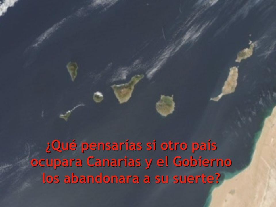 ¿Qué pensarías si otro país ocupara Canarias y el Gobierno los abandonara a su suerte