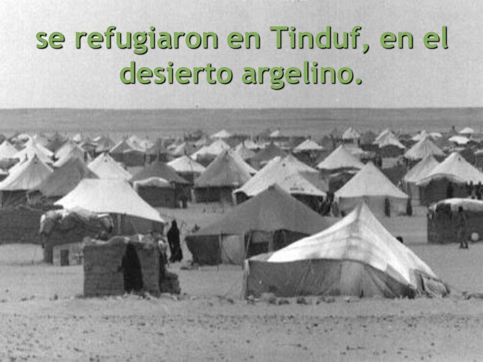 se refugiaron en Tinduf, en el desierto argelino.