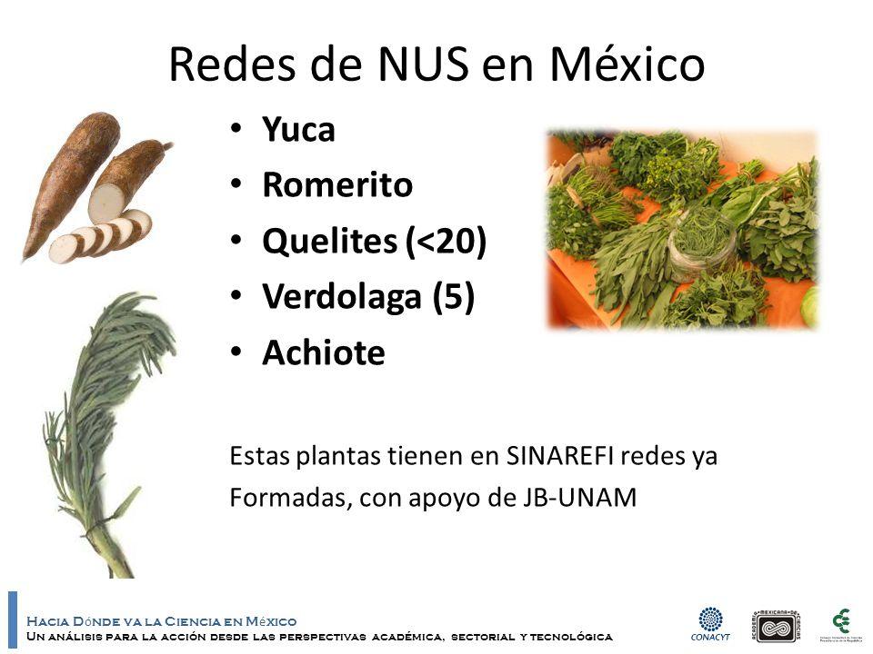 Hacia D ó nde va la Ciencia en M é xico Un análisis para la acción desde las perspectivas académica, sectorial y tecnológica Redes de NUS en México Yu