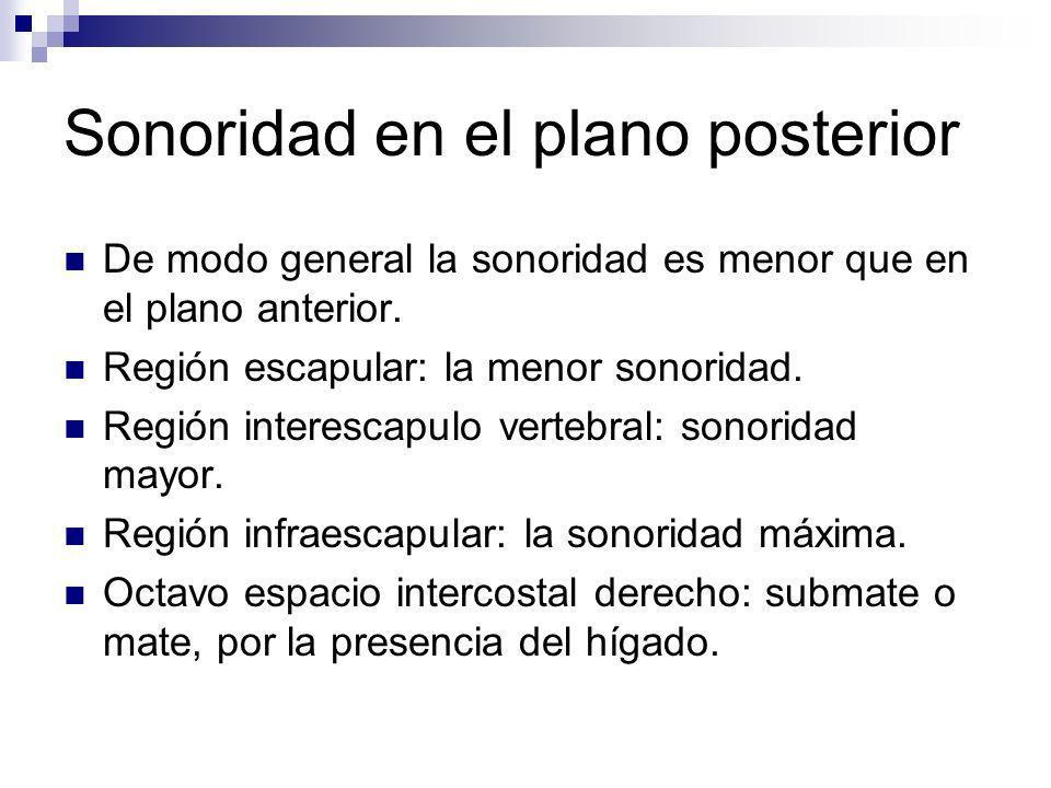 Sonoridad en el plano posterior De modo general la sonoridad es menor que en el plano anterior. Región escapular: la menor sonoridad. Región interesca