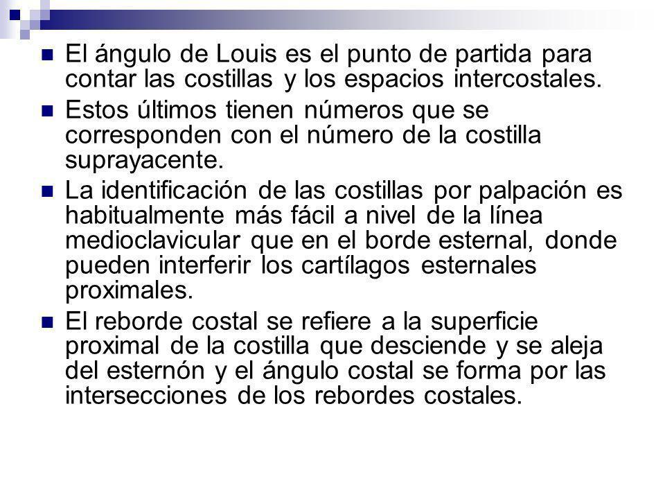 El ángulo de Louis es el punto de partida para contar las costillas y los espacios intercostales. Estos últimos tienen números que se corresponden con