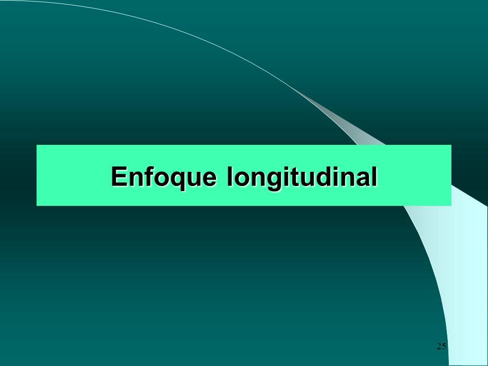 25 Enfoque longitudinal