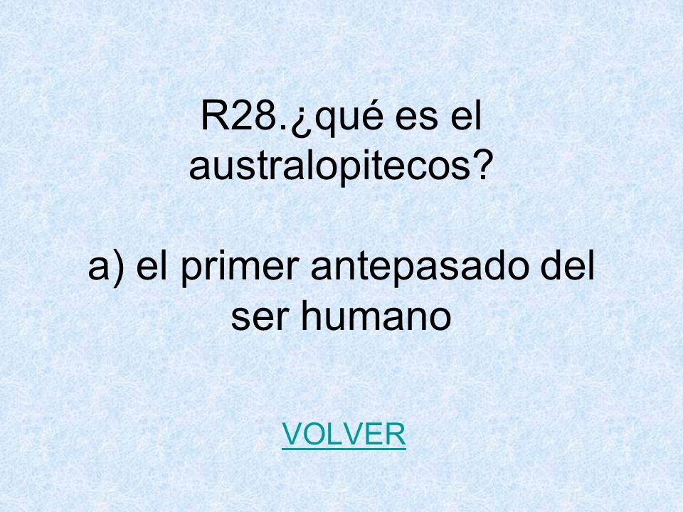 R28.¿qué es el australopitecos? a) el primer antepasado del ser humano VOLVER