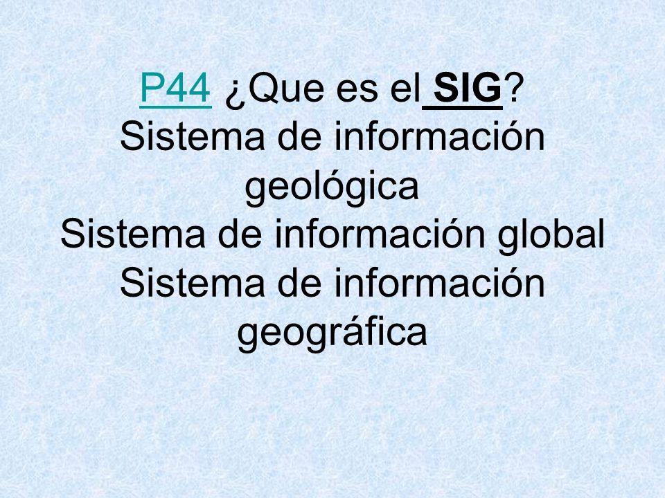 P44P44 ¿Que es el SIG.