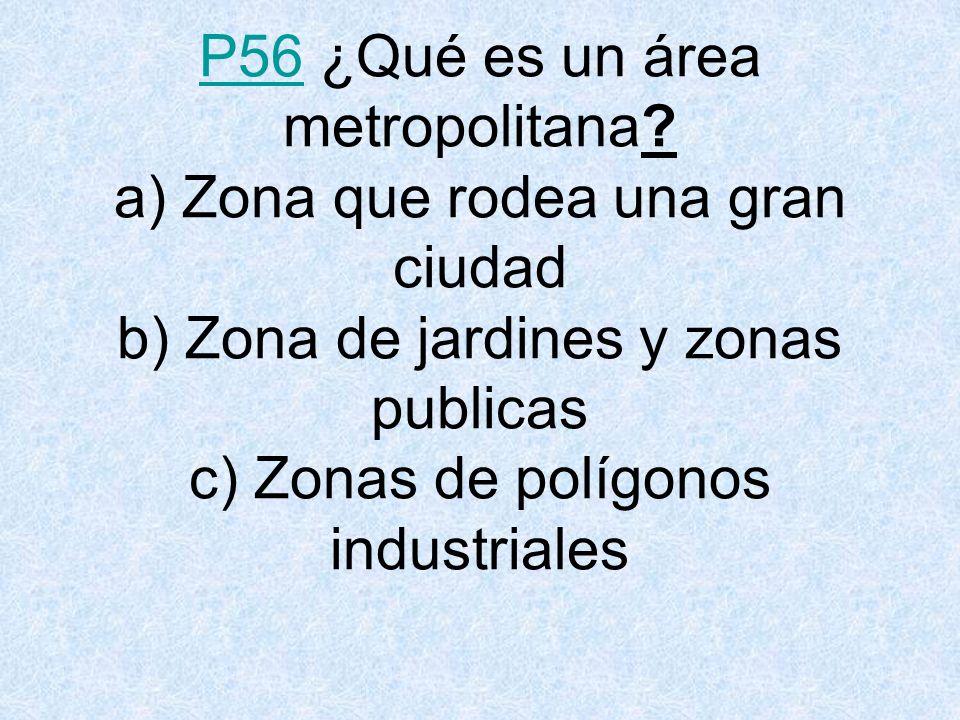 P56P56 ¿Qué es un área metropolitana.