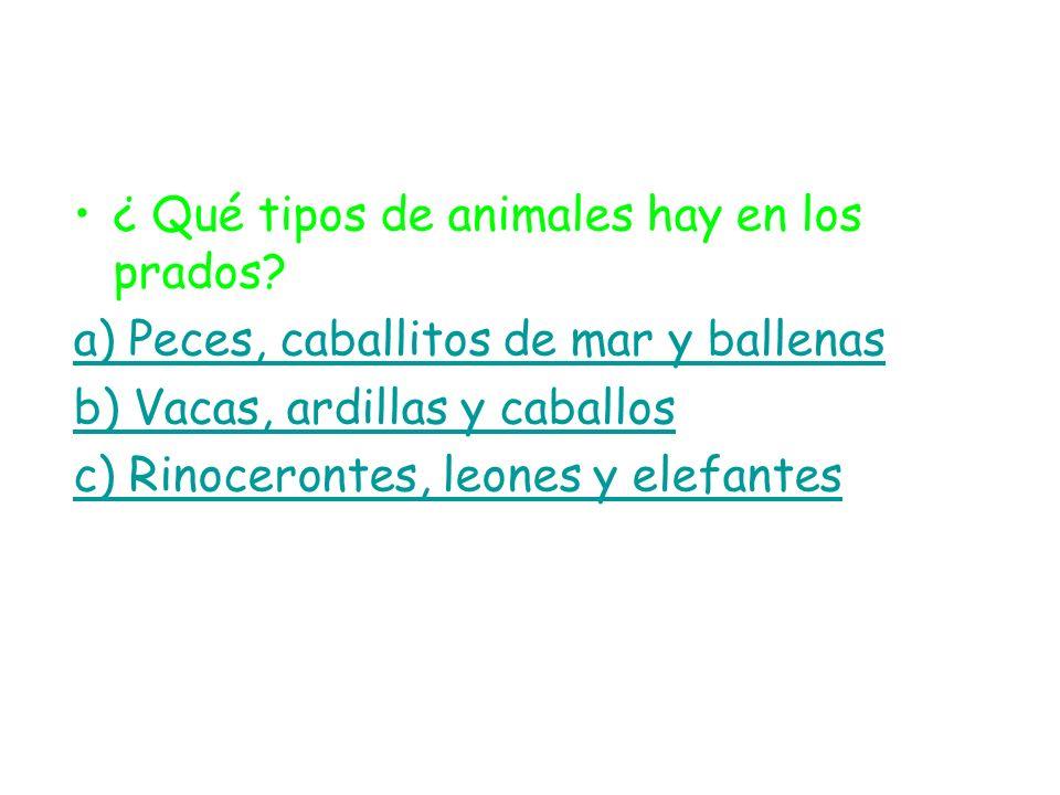 ¿ Qué tipos de animales hay en los prados? a) Peces, caballitos de mar y ballenas b) Vacas, ardillas y caballos c) Rinocerontes, leones y elefantes