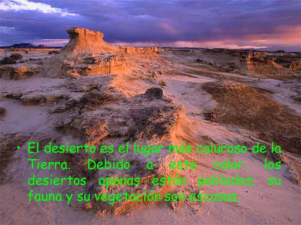 El desierto es el lugar más caluroso de la Tierra. Debido a este calor, los desiertos apenas están poblados; su fauna y su vegetación son escasas.
