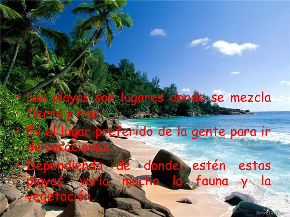 Las playas son lugares donde se mezcla tierra y mar. Es el lugar preferido de la gente para ir de vacaciones. Dependiendo de donde estén estas playas,