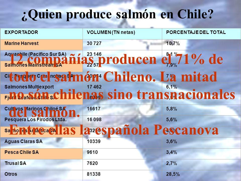 ¿Quien produce salmón en Chile? EXPORTADORVOLUMEN (TN netas)PORCENTAJE DEL TOTAL Marine Harvest30 72710,7% Aquachile (Pacifico Sur SA)23 1468,1 % Salm
